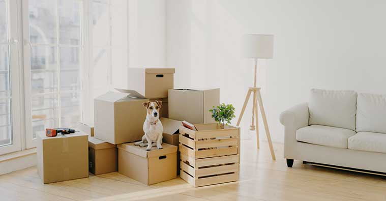Where to get free cardboard boxes for moving